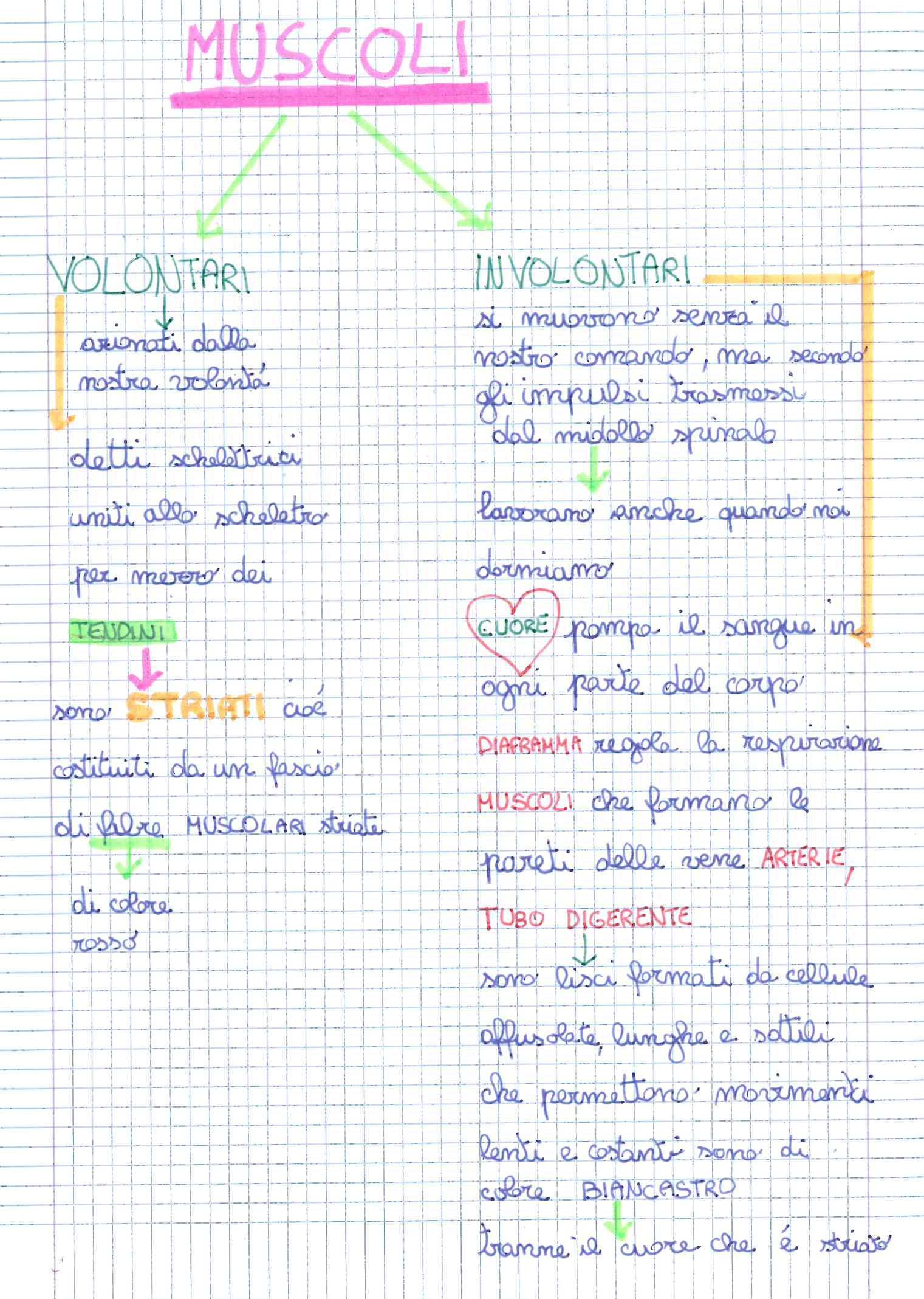 Preferenza Quinta classe - SCIENZE | MAESTRA MG MAESTRA MG XD07