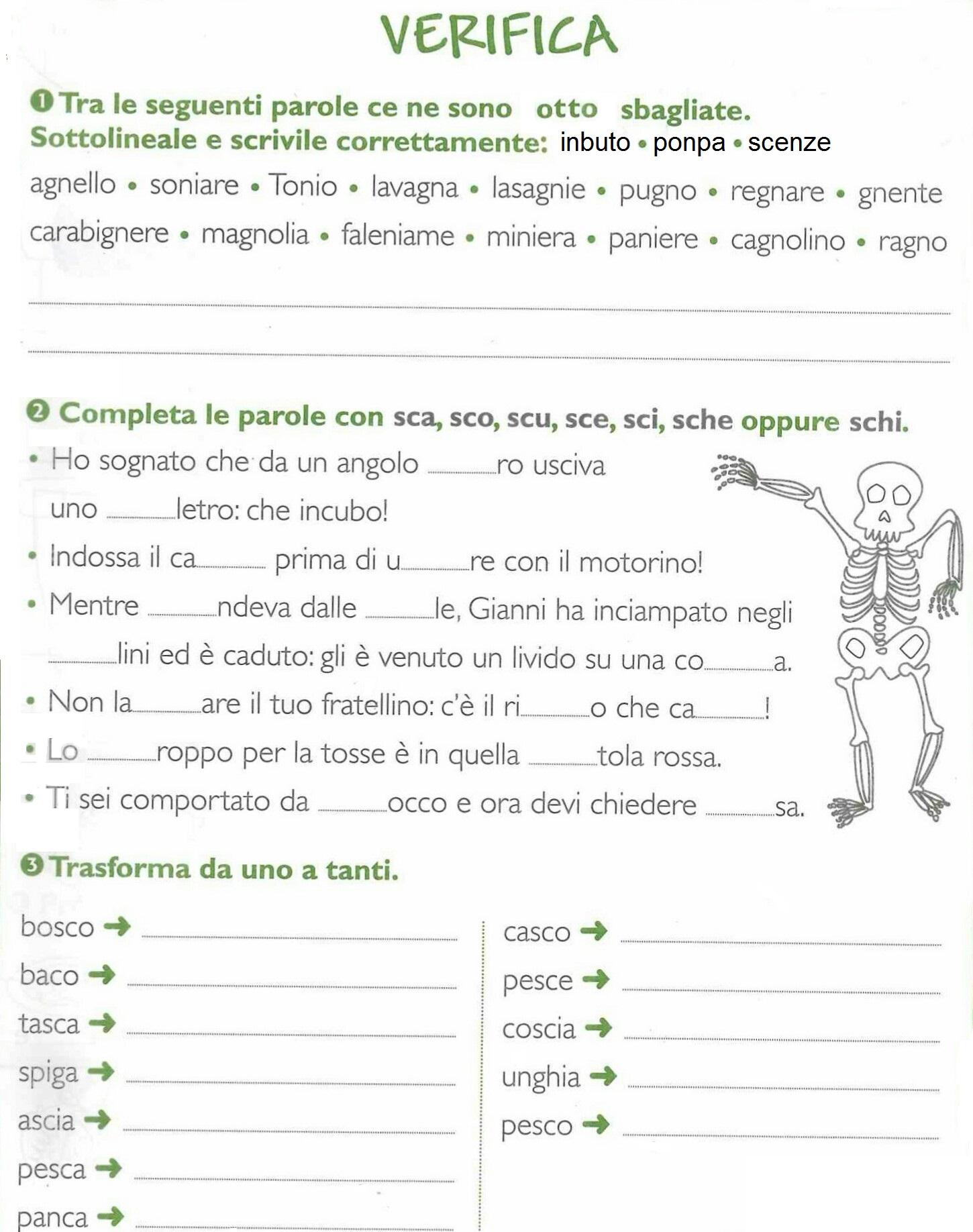 Popolare Seconda classe - LINGUA ITALIANA | MAESTRA MG MAESTRA MG RT49